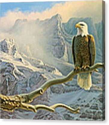 In The High Country-eagle Canvas Print