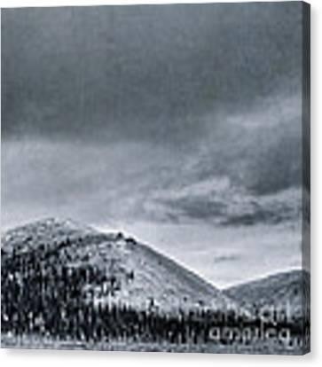 Land Shapes 10 Canvas Print by Priska Wettstein