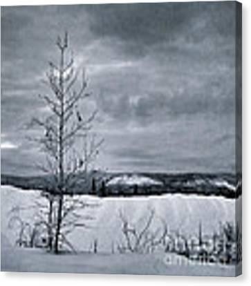 Land Shapes 15 Canvas Print by Priska Wettstein