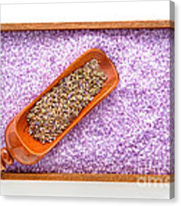 Lavender Seeds And Bath Salts Canvas Print by Olivier Le Queinec
