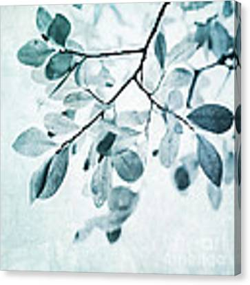 Leaves In Dusty Blue Canvas Print by Priska Wettstein