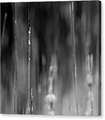 Life's Ripple - Left Canvas Print by Steven Santamour