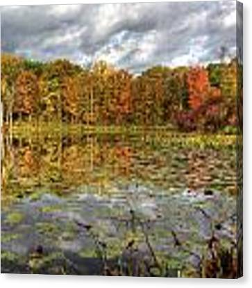 Lily Pads On Foster Pond Canvas Print by At Lands End Photography
