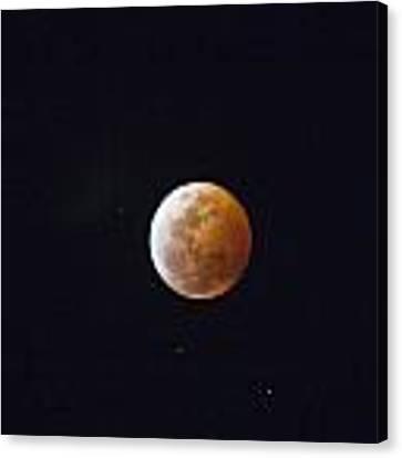 Luna Eclipse Canvas Print by Debbie Cundy