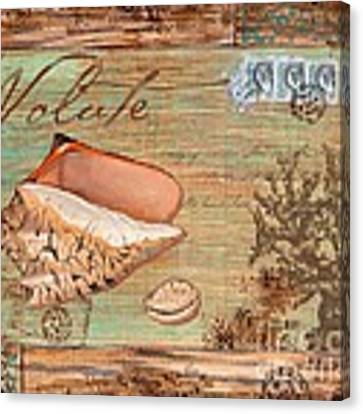 Natura Volute Canvas Print