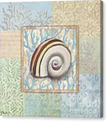 Oceanic Shell Collage Iv Canvas Print