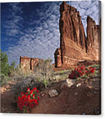 Paintbrush And The Organ Rock Canvas Print by Tim Fitzharris