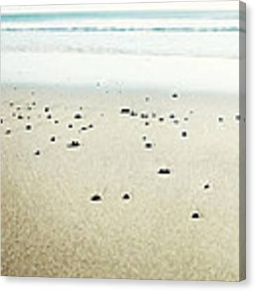Peaceful Beach Canvas Print by Lupen  Grainne
