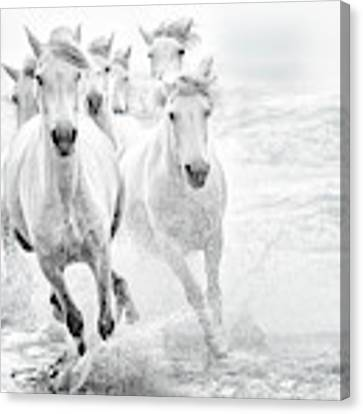 Running In The Sea Canvas Print