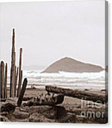 Rustic Formation Canvas Print by Micki Findlay