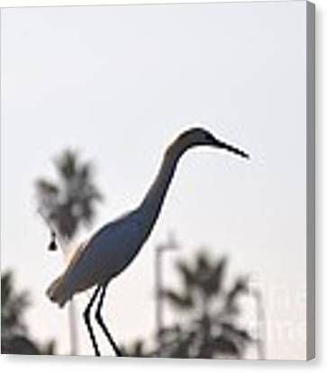The Art Of Fishing Canvas Print by Laurie Lundquist