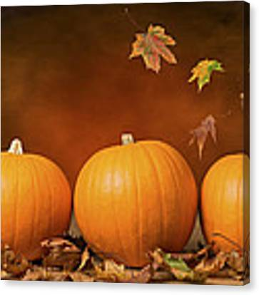Three Pumpkins Canvas Print by Amanda Elwell