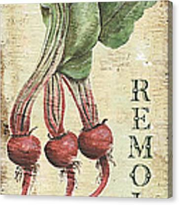 Vintage Vegetables 3 Canvas Print