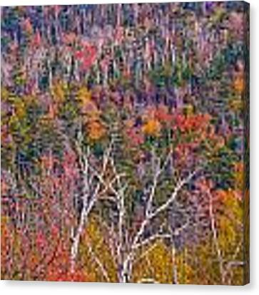 Wall Of Color Canvas Print by Jeff Sinon