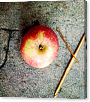 Apple Joy Canvas Print by Kim Fearheiley