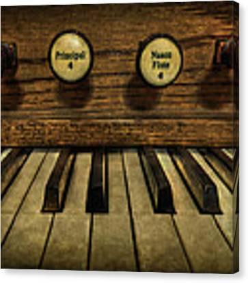 Facing The Music Canvas Print by Evelina Kremsdorf