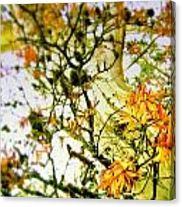 Magic Tree Canvas Print by HweeYen Ong