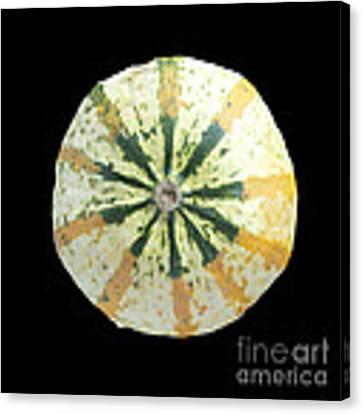 Ornamental Melon Canvas Print by Heiko Koehrer-Wagner