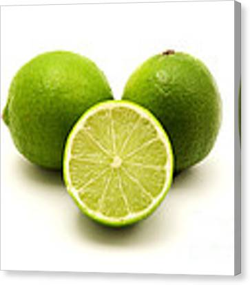 Persian Lime Canvas Print