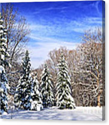 Winter Forest With Snow Canvas Print by Elena Elisseeva