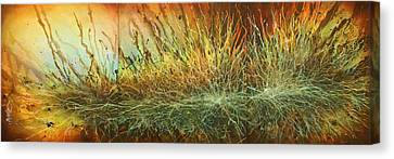 ' The Reach' Canvas Print by Michael Lang