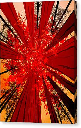 Abstract Landscape Art Sequoia Trees 3 Canvas Print by Diana Van
