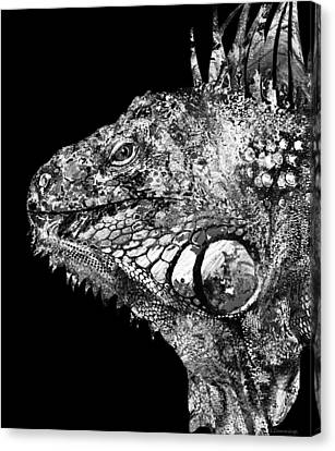 Black And White Iguana Art - One Cool Dude 2 - Sharon Cummings Canvas Print by Sharon Cummings
