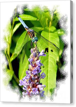 Canvas Print featuring the photograph  Blue Dragonfly by Lila Fisher-Wenzel