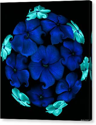 Blue Vinca  Canvas Print by Evelyn Patrick