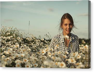 Chamomile Canvas Print by Vadim Grabbe