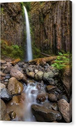 Dry Creek Falls II Canvas Print by David Gn