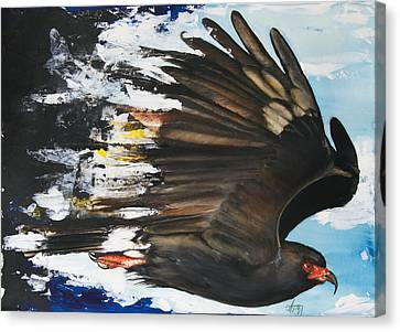 Black Artist Canvas Print -  Everglades Snail Kite by Anthony Burks Sr