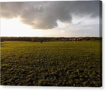 Fields Of Limburg Canvas Print