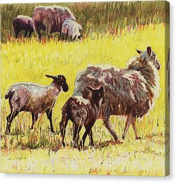 Nurture Canvas Print -  Following by Helen White