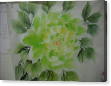 Green Peony004 Canvas Print by Dongling Sun