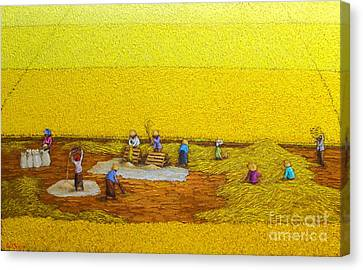 Harvest 17 Canvas Print by Sri Martha