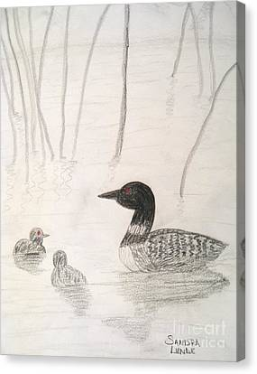 Loon Float Canvas Print by Sandra Lunde