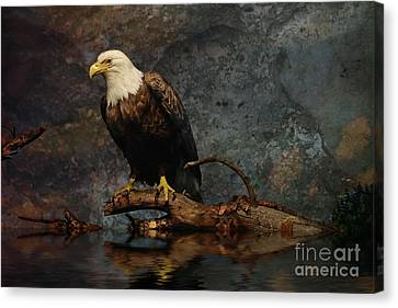 Magestic Eagle  Canvas Print