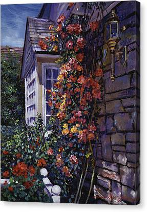 Magnificent Climbing Roses Canvas Print by David Lloyd Glover