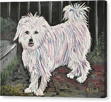 Maltese Terrier Mix In Living Color Canvas Print by Reb Frost