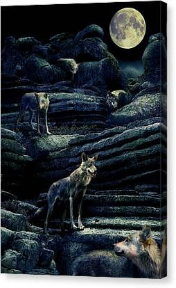 Moonlit Wolf Pack Canvas Print by Mal Bray