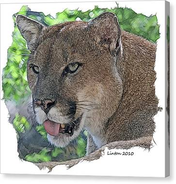 Panther 2 Canvas Print by Larry Linton