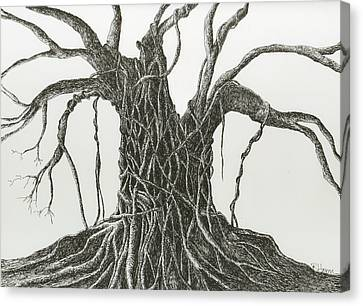 Canvas Print featuring the drawing  Patience by Rachel Hames