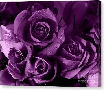 Purple Haze Canvas Print by Nancie DeMellia