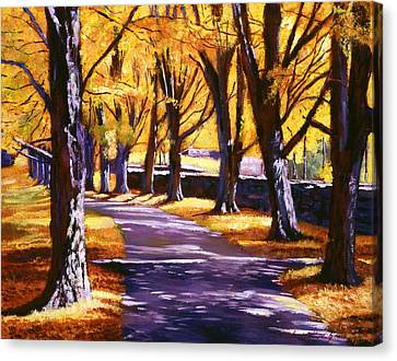 Road Of Golden Beauty Canvas Print by David Lloyd Glover
