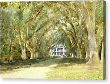 Canvas Print featuring the photograph  Rosedown Plantation by John Hix