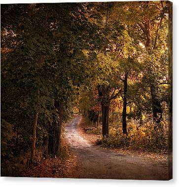 Rural Road  Canvas Print by Jessica Jenney