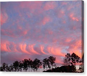 Canvas Print featuring the photograph  Salmon Cloud Parade At Sunset by Jeanne Kay Juhos