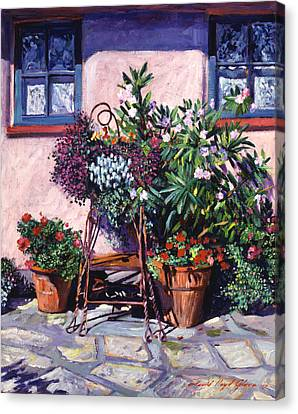Shadows And Flower Pots Canvas Print by David Lloyd Glover