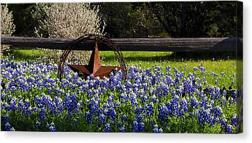 Texas Bluebonnets IIi Canvas Print by Greg Reed